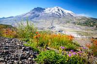 Road trip to Mt St Helens 2014