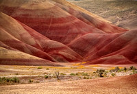 Painted Hills, OR 05